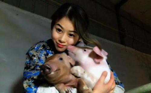 Việc nhẹ lương cao dành cho phái đẹp: Cô gái trẻ kiếm 3 tỉ đồng mỗi năm nhờ việc hôn lợn - Ảnh 6.