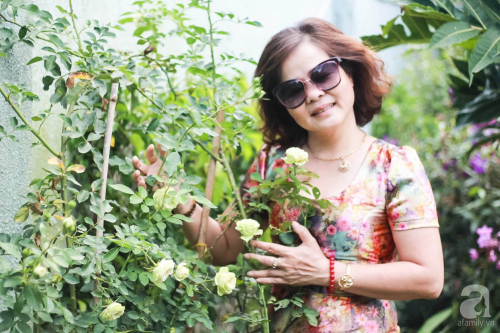 Khu vườn 600m² đẹp lãng mạn và rực rỡ hoa hồng của cô giáo dạy Văn ở Đà Lạt - Ảnh 11.