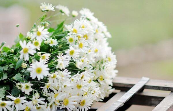 Tết đến rồi, chọn hoa theo mệnh gia chủ để cả năm được sung túc an khang, tài lộc dồi dào - Ảnh 1.
