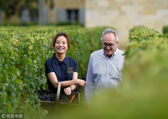 Én nhỏ Triệu Vy xinh đẹp tự tay thu hoạch nho trong khu vườn rộng 7ha của gia đình - Ảnh 11.