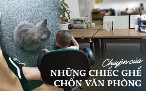 Chuyện ức chế của những chiếc ghế văn phòng: Ghế là thế giới riêng của chị, phải đâu chỗ em để con chơi, chó mèo ngồi! - Ảnh 1.