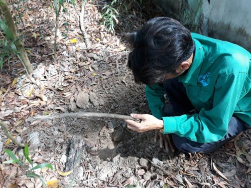 Vu 300 xac thai nhi: Vu Suc khoe ba me - Tre em de nghi xac minh thong tin