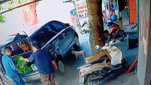 Góc cơ hội: Người đàn ông đi xế hộp vào mua bánh gai rồi tiện tay bế trộm luôn chó của chủ quán